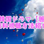 麗の無料動画の日本語字幕付き視聴方法!韓国ドラマはパンドラやHuluで観れる?