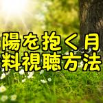 太陽を抱く月の無料動画の日本語字幕付き視聴方法!パンドラやHuluで観れる?