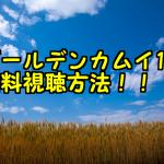 ゴールデンカムイ1期のアニメ動画を全話無料でフル視聴!アニチューブで観れる?