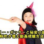 ハリーポッターと秘密の部屋無料動画を日本語吹き替え付きフル視聴!パンドラで観れる?