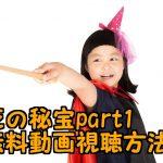 ハリーポッターと死の秘宝part1無料動画!日本語吹き替え付きでフル視聴出来る!